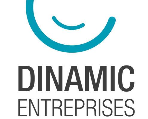 dinamic-entreprises-aide-aux-pme-pmi-vertical